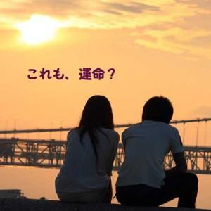 石田祐未の実家はどこ?琴奨菊との共通点と結婚にいたるまでの過程を書きます。人間の直感は本当に当たる確率が高いから直感に信じることはよいと思います。結婚前に同棲生活をして見極めるという期間があればここまで離婚率も高くならないのではないだろうか。
